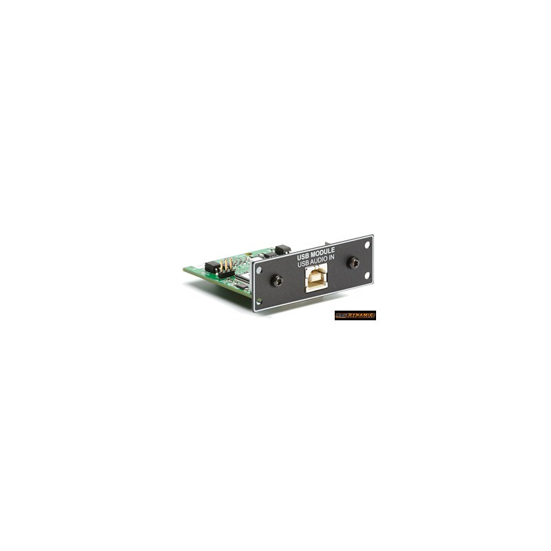 Lyngdorf TDAI-2170 carte option USB